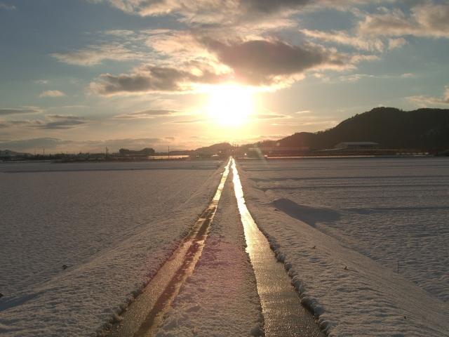 太陽へ続く一本道の画像